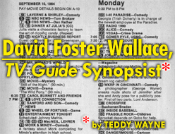 David Foster Wallace, TV Guide Synopsist