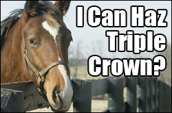I Can Haz Triple Crown?