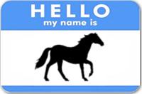 A Horse w/ No Name